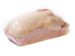 Canard entier prêt à cuire